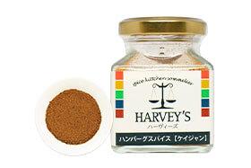 ハンバーグスパイス【ケイジャン】